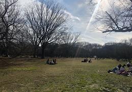 ピクニックって最高!!