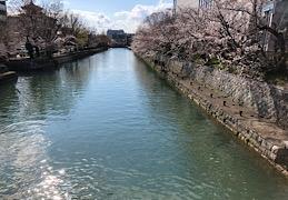 京都に行きました♪