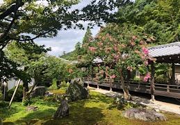 夏休み2019 〜京都の旅〜