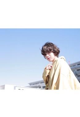 style 528